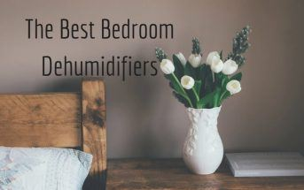 the best small dehumidifier