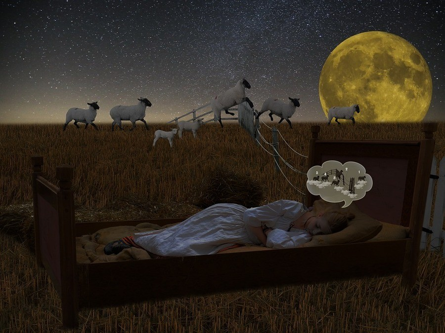 what does insomnia mean
