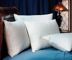 pacific coast double down surround pillows